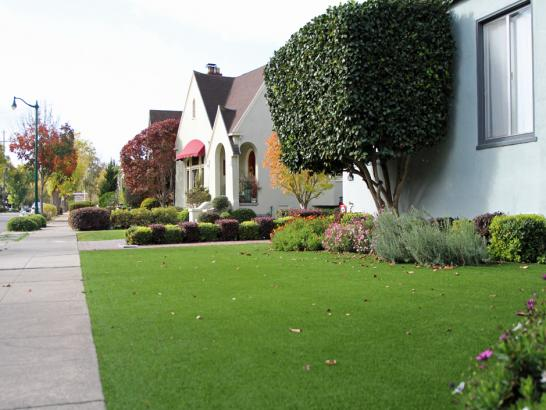 Artificial Grass Photos: Grass Installation Norco, California Garden Ideas, Front Yard Landscaping