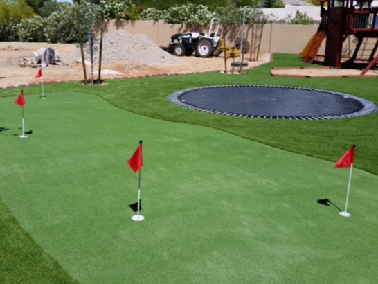 Artificial Grass Photos: Grass Turf Hemet, California Best Indoor Putting Green, Backyard Makeover