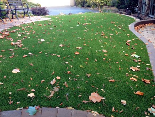 Artificial Grass Photos: Grass Turf Mortmar, California Roof Top, Front Yard Ideas