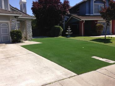 Artificial Grass Photos: Grass Turf Sun City, California Landscape Design, Landscaping Ideas For Front Yard