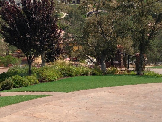 Artificial Grass Photos: Green Lawn East Hemet, California Lawn And Landscape, Beautiful Backyards
