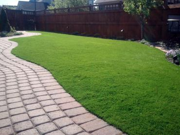 Artificial Grass Photos: Green Lawn Pedley, California Cat Playground, Backyard Landscaping Ideas