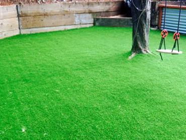 Artificial Grass Photos: How To Install Artificial Grass Anza, California Landscaping, Backyard Garden Ideas