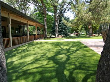 Artificial Grass Photos: How To Install Artificial Grass Idyllwild-Pine Cove, California Dog Run, Backyard Garden Ideas