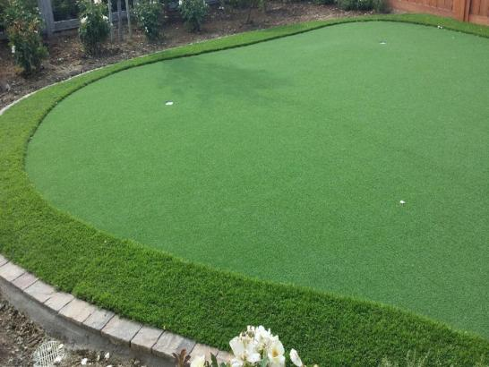 Artificial Grass Photos: Installing Artificial Grass Idyllwild, California Roof Top, Backyard Garden Ideas