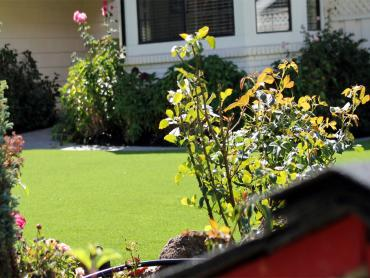 Artificial Grass Photos: Lawn Services Desert Center, California Landscape Photos, Front Yard