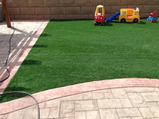 Artificial Grass Photos: Lawn Services Lakeview, California Garden Ideas, Backyard Landscape Ideas