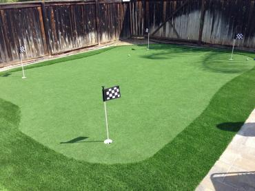 Artificial Grass Photos: Lawn Services Ripley, California Artificial Putting Greens, Backyard