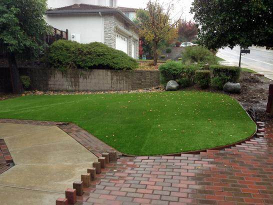 Artificial Grass Photos: Lawn Services Vista Santa Rosa, California Design Ideas, Backyard Landscaping Ideas