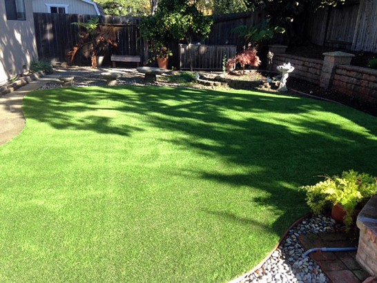 Artificial Grass Photos: Lawn Services Wildomar, California Indoor Dog Park, Backyards