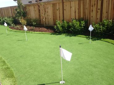 Artificial Grass Photos: Outdoor Carpet Glen Avon, California How To Build A Putting Green, Backyard Landscaping