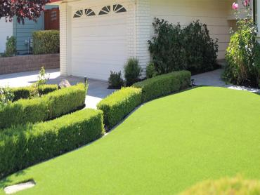 Artificial Grass Photos: Plastic Grass Corona, California Landscaping, Small Front Yard Landscaping