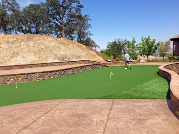 Artificial Grass Photos: Plastic Grass Mountain Center, California Roof Top, Backyard Garden Ideas