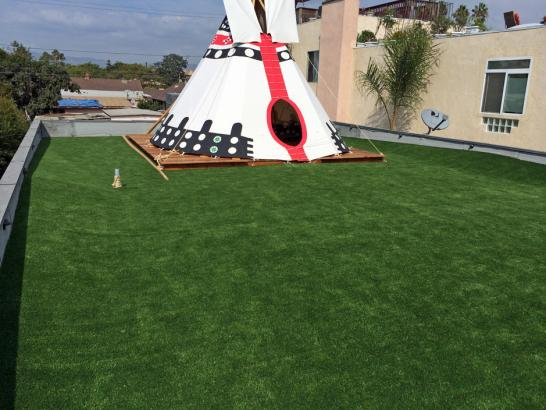 Artificial Grass Photos: Plastic Grass Norco, California Garden Ideas, Veranda