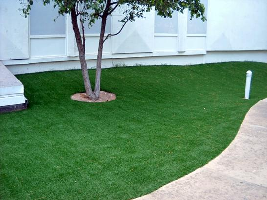 Artificial Grass Photos: Plastic Grass Pedley, California Roof Top, Commercial Landscape