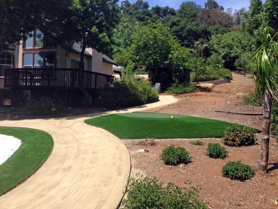 Artificial Grass Photos: Plastic Grass Rubidoux, California Putting Green Carpet, Small Front Yard Landscaping