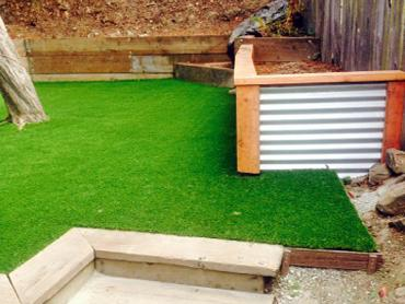 Artificial Grass Photos: Synthetic Grass Bermuda Dunes, California Landscaping Business, Backyard Landscape Ideas