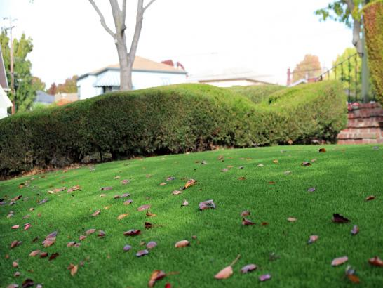 Artificial Grass Photos: Synthetic Grass Cabazon, California Landscaping, Front Yard