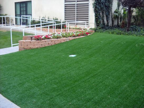 Artificial Grass Photos: Synthetic Grass Cost Green Acres, California Design Ideas, Front Yard Landscaping Ideas