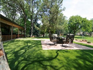 Artificial Grass Photos: Synthetic Grass East Blythe, California Landscaping Business, Backyard Design