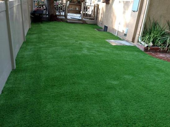 Artificial Grass Photos: Synthetic Grass East Hemet, California Gardeners, Backyard