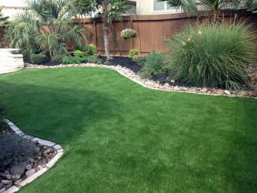 Artificial Grass Photos: Synthetic Grass Homeland, California Backyard Deck Ideas, Backyard Landscape Ideas