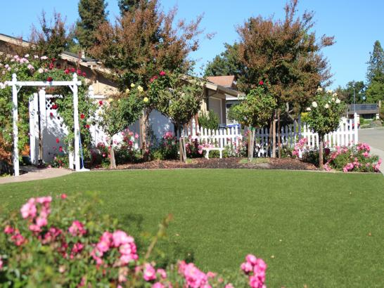 Artificial Grass Photos: Synthetic Lawn Highgrove, California Lawn And Landscape, Front Yard Design