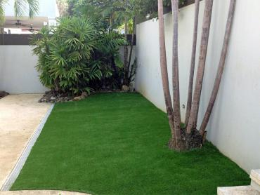Artificial Grass Photos: Synthetic Lawn Indio, California Lawn And Garden, Backyard Designs
