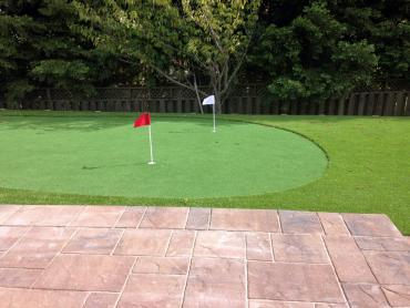 Artificial Grass Photos: Synthetic Lawn Lake Elsinore, California Putting Green Grass, Backyard Landscaping