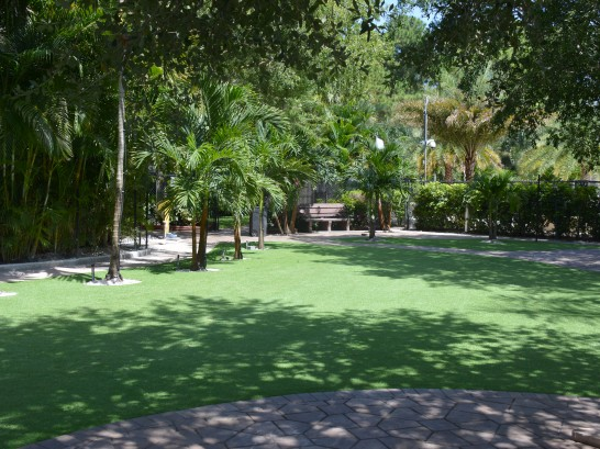 Artificial Grass Photos: Synthetic Lawn Norco, California Home And Garden, Commercial Landscape