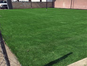 Artificial Grass Photos: Synthetic Lawn Quail Valley, California Red Turf