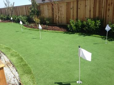 Artificial Grass Photos: Synthetic Turf Anza, California Gardeners, Backyard Designs