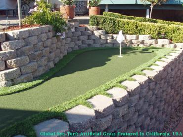 Synthetic Turf Pedley, California Paver Patio, Beautiful Backyards artificial grass