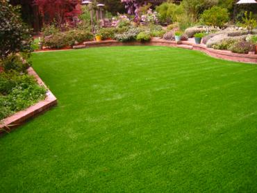 Synthetic Turf Sedco Hills, California Landscape Design, Backyard Landscaping artificial grass