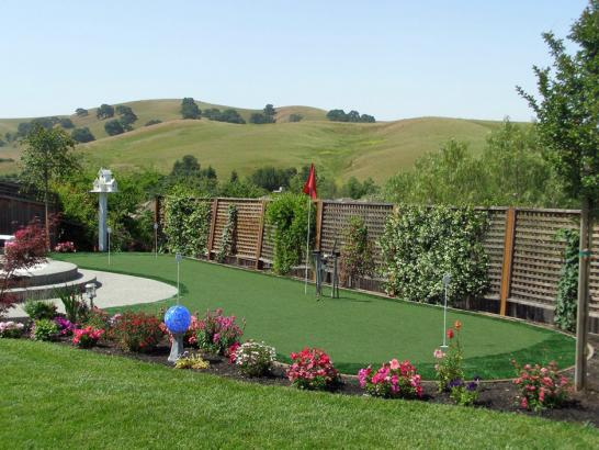 Artificial Grass Photos: Synthetic Turf Sky Valley, California Putting Green, Backyard