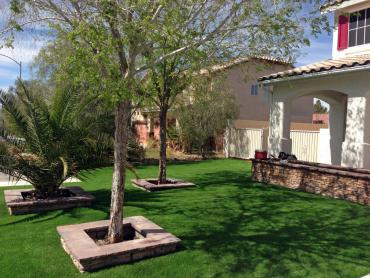 Artificial Grass Photos: Synthetic Turf Supplier East Hemet, California Landscape Ideas, Front Yard
