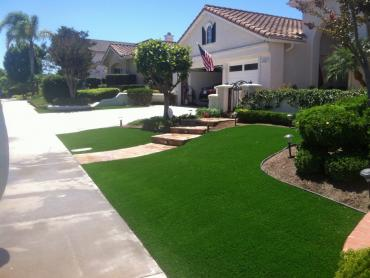 Artificial Grass Photos: Synthetic Turf Supplier Garnet, California Lawn And Garden, Front Yard Landscaping Ideas