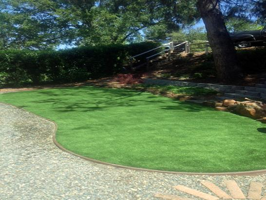 Artificial Grass Photos: Synthetic Turf Supplier Garnet, California Home And Garden, Backyard Landscaping