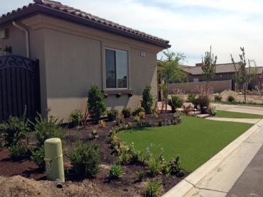 Artificial Grass Photos: Synthetic Turf Supplier Glen Avon, California Rooftop, Front Yard Landscape Ideas