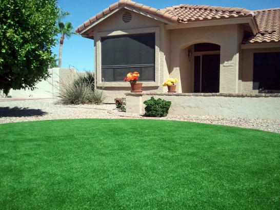 Artificial Grass Photos: Synthetic Turf Supplier Rubidoux, California Backyard Playground, Front Yard Ideas