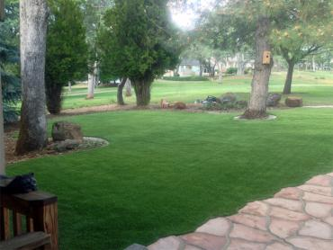 Artificial Grass Photos: Synthetic Turf Supplier Sky Valley, California City Landscape, Front Yard