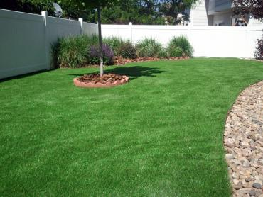 Synthetic Turf Temecula, California Garden Ideas, Backyard Design artificial grass