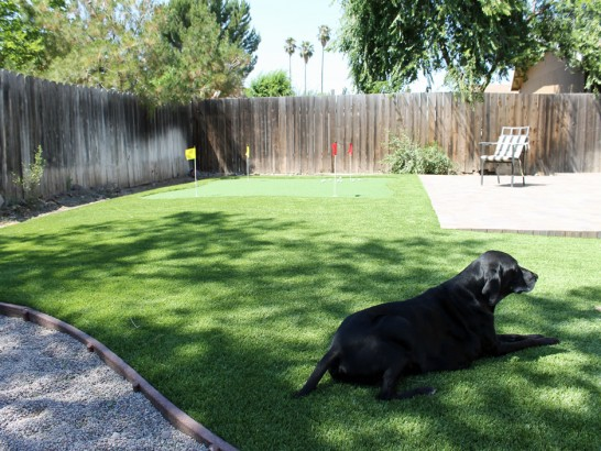 Artificial Grass Photos: Turf Grass Garnet, California Backyard Playground, Backyard Design