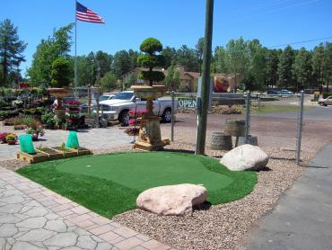 Artificial Grass Photos: Turf Grass Good Hope, California Home And Garden, Commercial Landscape