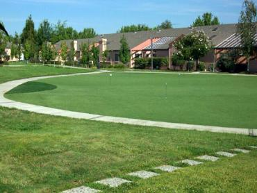 Artificial Grass Photos: Turf Grass Norco, California Landscaping, Commercial Landscape