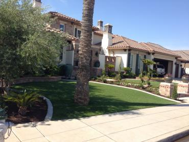 Artificial Grass Photos: Turf Grass Palm Desert, California Roof Top, Front Yard Landscape Ideas