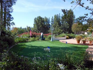 Artificial Grass Photos: Turf Grass Temecula, California Roof Top, Backyards